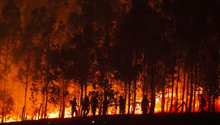 ¿Urge renovación?: Diversos actores económicos evalúan cómo prevenir consecuencias del cambio climático