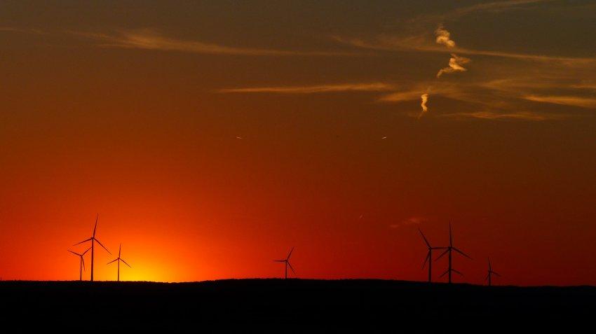 COP25: Una oportunidad para descarbonizar nuestra economía