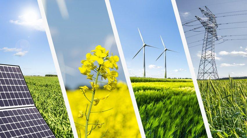 El rol de la energía en una reactivación sostenible